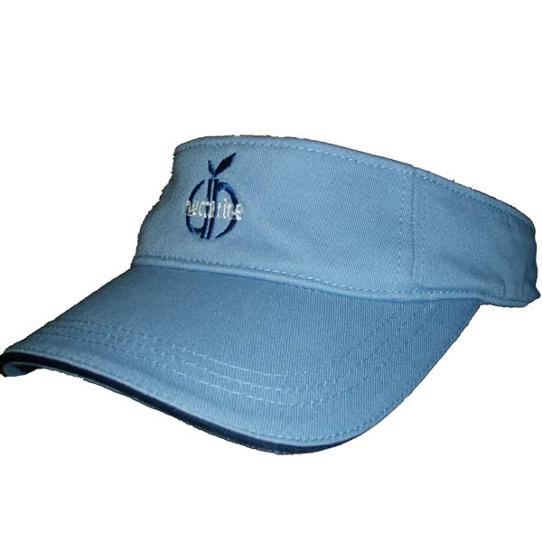 Visor (light blue)
